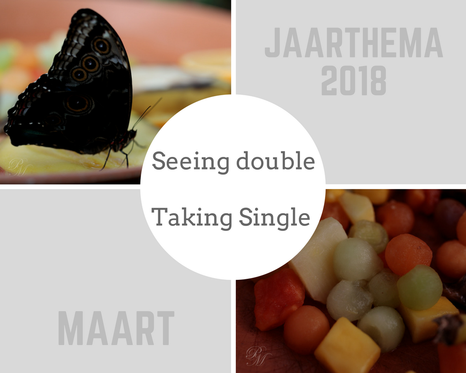 Jaarthema 2018: Seeing double / Taking single -maart